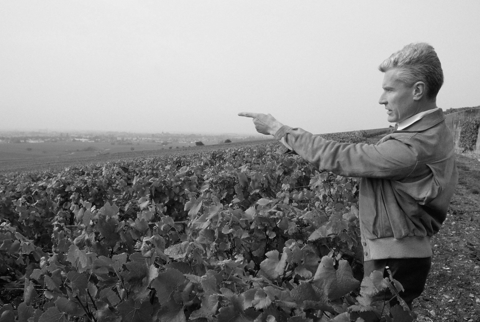 Joseph Drouhin in the vineyard black and white