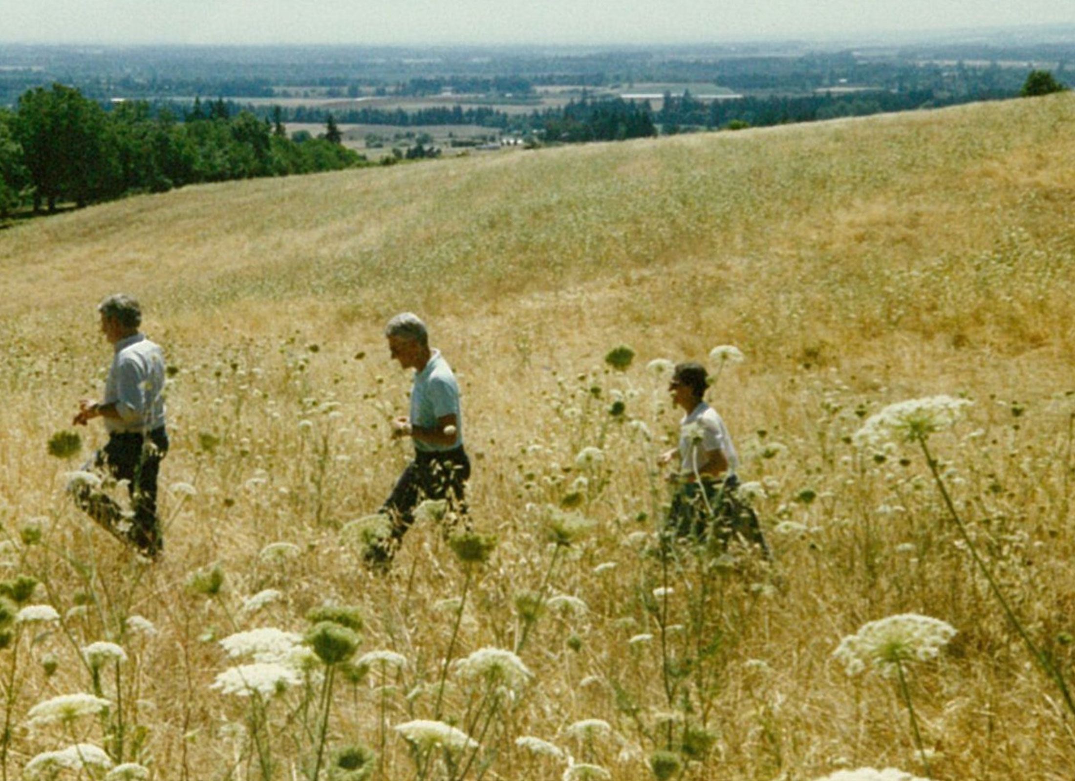 Drouhin Family members in the fields to become vineyards 1980s