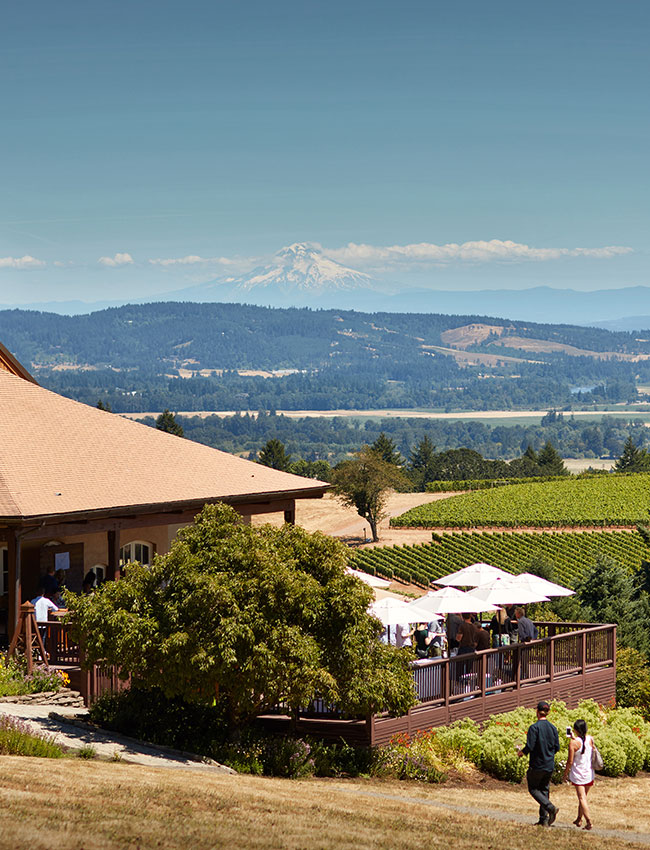 View of Mount Hood from the DDO tasting room
